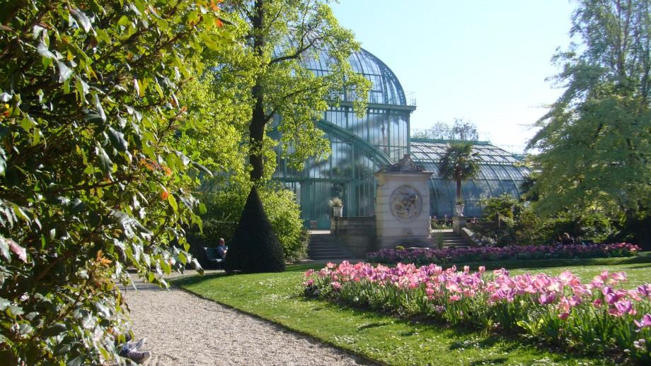 Jardin des serres dauteuil for Le jardin des serres d auteuil